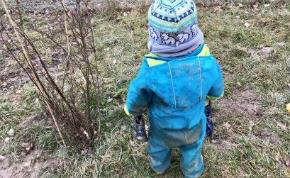 Natur- und Waldkindergarten – ein kleines Paradies