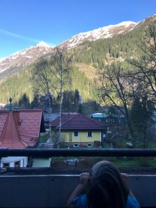 Merlin schaut im Hundehotel über den Balkon auf die Berge