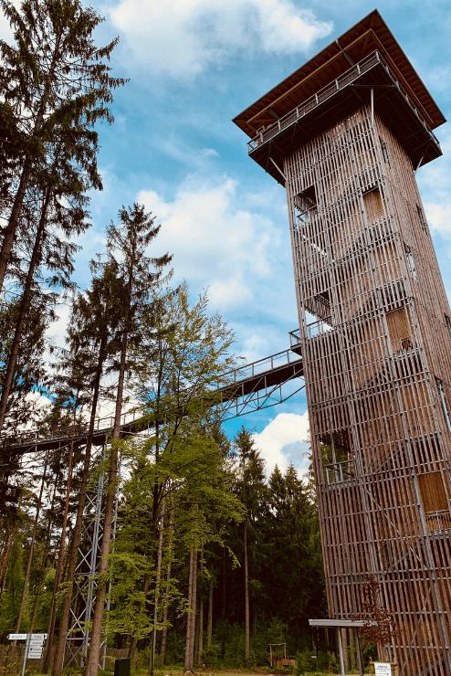 Wildpark Lüneburger Heide – Turm Baumwipfelpfad