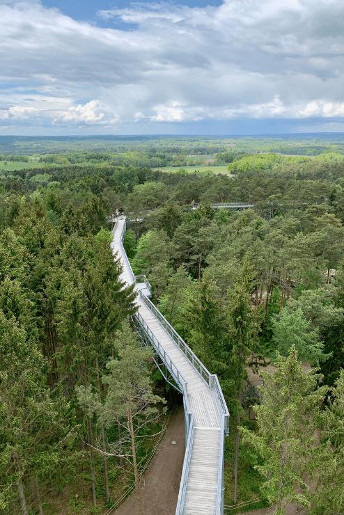 Wildpark Lüneburger Heide – Baumwipfelpfad von oben