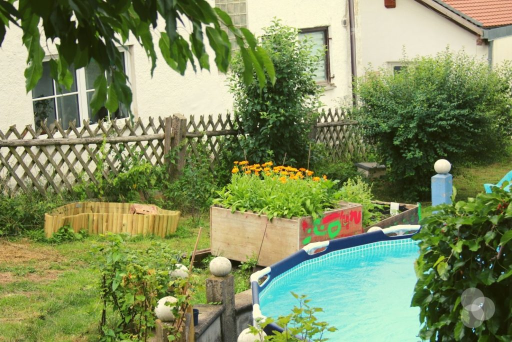 Schatzsuchen für Kinder – unser Naturgarten