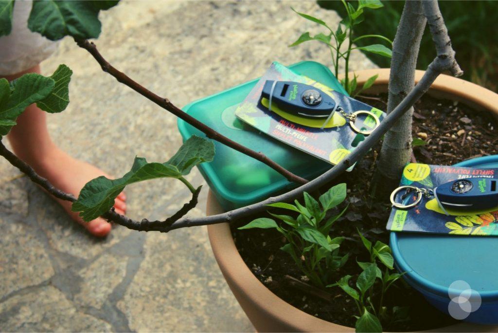 Schatzsuchen für Kinder – Schatz im Feigenbaum